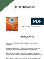 Tejido Nervioso PDF