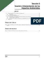 CapV Identificacion de Impactos