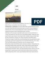 Jenis Gunung API