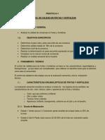 ANÁLISIS DE CONSERVAS EN FRUTAS Y HORTALIZAS.docx