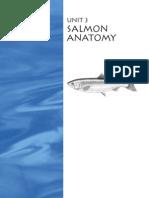 sic_primary_unit_3.pdf