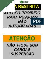 pdf placas.pdf