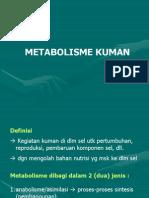 Metabolism ehghgd