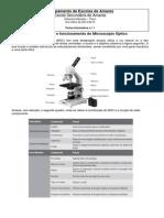 FI Microscopio