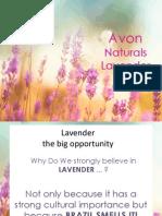Lavender _ Sept 2013
