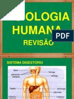 REVISAO-FISIOLOGIAHUMANA