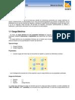 1.1_CARGA_ELECTRICA.pdf