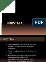 Prostata Tema 6