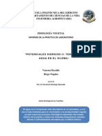 Informe Fisio Vegetal Girasol