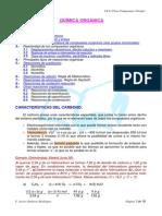 09QuímicaOrgánica.pdf