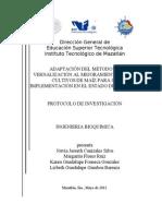 Adatación del método de vernalización al mejoramienro de los cultivos de maíz para su implementación  en el estado de Sinaloa