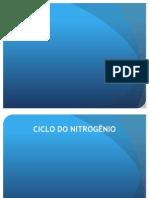 Ciclo Nitro