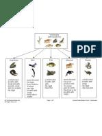 Animal Classification Chart - Vertebrates
