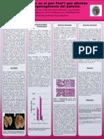 PosterPresentations.com 36x48 Template V4 PDF
