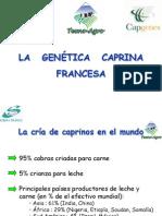 Rmunzenmayer Genetica Caprina Francesa Arica 2009