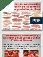 Contaminación, Conservación y Alteración De Las Carnes - Diapositivas