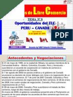 8 Analisis Tlc Peru-canada 2013-1