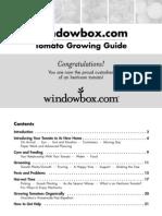 Windowbox Tomato Care Guide