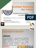 diapos fermentaciones alimentarias