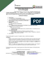 ACTA DE CONSEJO TÉCNICONOV06