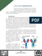 Receptores Fc e de Complemento - Felipe Franco XLVIII