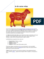 Tipos de Corte de Carne Ovina