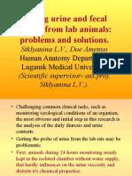 Diuresis research work