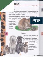 365 de curiozitati despre animale II