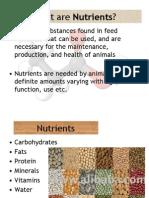 Presentation Nutrition