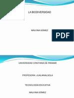 queeslabiodiversidad-100306093112-phpapp02