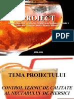PreZenTare Nectar de Piersici