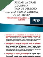 Principios Grales Prueba