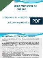 VEEDURIAS CIUDADANAS PRESENTACION.pptx