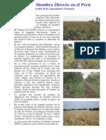 Siembra Directa Desafios de La Agricultura