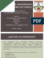 20_TorresMarroquin_BUAP