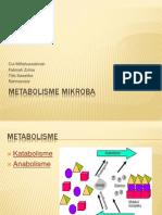 METABOLISME MIKROBA