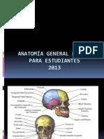 1.Anatomia General (Medicina Forense)