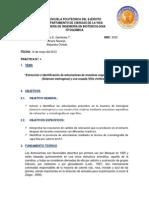informe_antocianinas