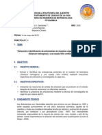 Informe_antocianinas Completo Entregar