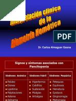 archivos_clases_pregrado_hematologia_Interpretación clínica de la biometría hemática