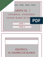 cuentasil-1