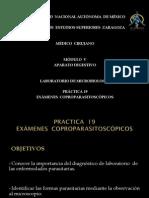 coproparasitoscopico