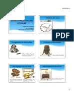 material aula células fabiano(1)