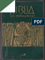 Biblia Do Peregrino Novo Testamento
