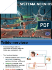 Clase 20 y 21.Generalidades e Histologia Del Tejido Nervioso