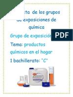 Carpeta  de los grupos de exposiciones de química