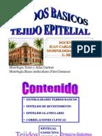 HistoBasicoEpitelial