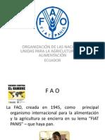 FAO_SEGURIDAD_ALIMENTARIA[1].pptx
