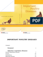 Important Poultry Diseases