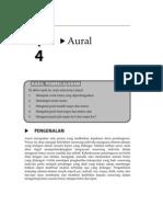 23105807 to Pik 4 Aural